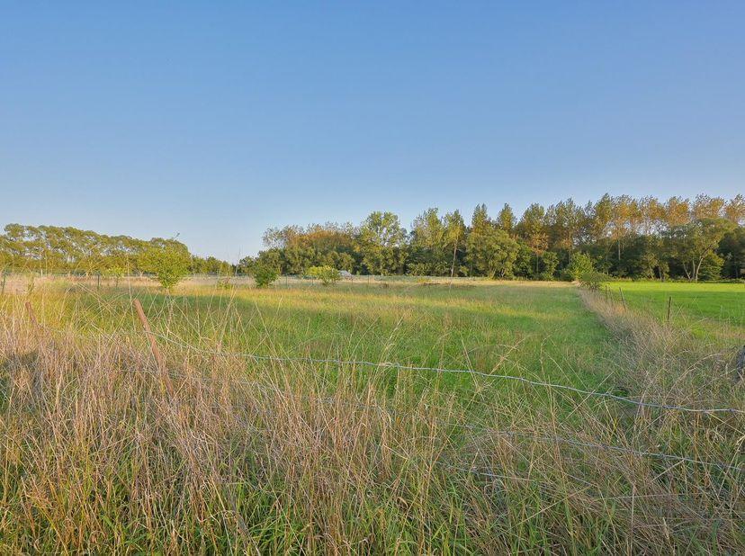 PERCEEL LANDBOUWGROND<br /> Een perceel landbouwgrond met een oppervlakte van 3.225m².<br /> Gekend ten kadaster Putte, 3e afdeling, sectie A, nu