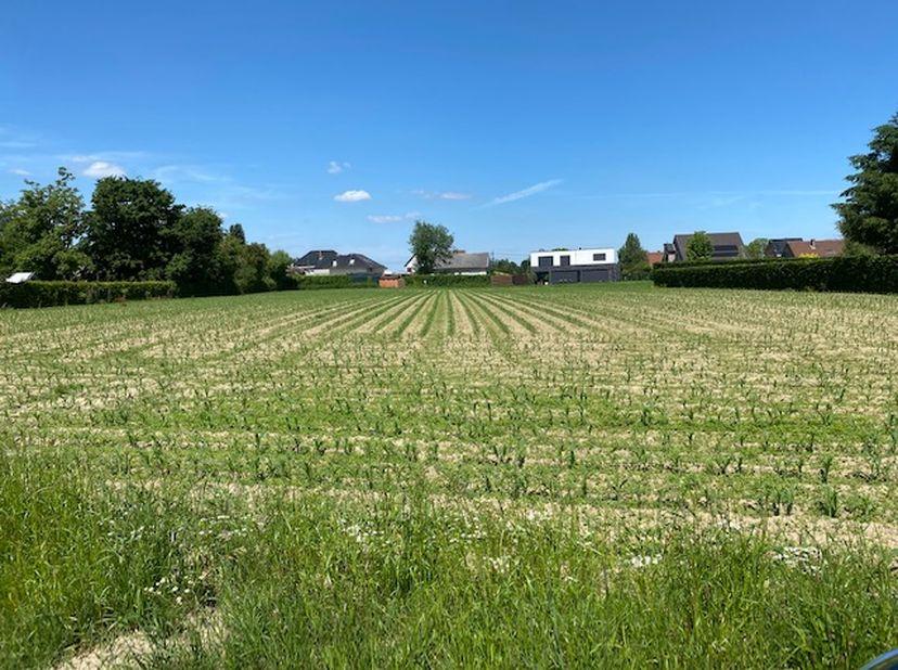 Deze riante villakavel van 27a68ca is rustig gelegen in het landelijke Diepenbeek, op de grens met Hasselt (Rapertingen). Het perceel is westelijk geo