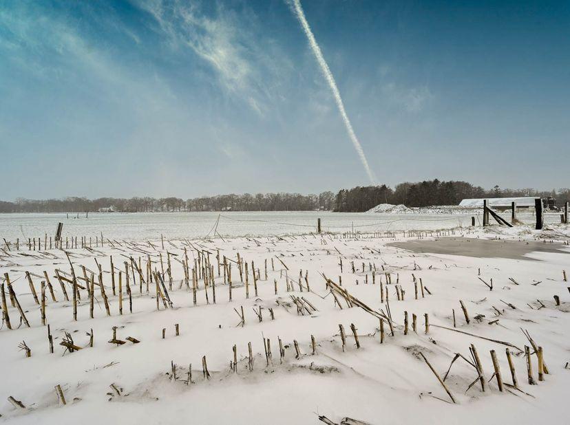 Gemeente Bocholt (1e afdeling) <br /> Een perceel achtergelegen grond, gelegen Loozen Het Gehucht, kadastraal gekend sectie A deel van nummer 0275E P