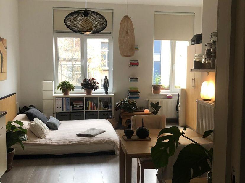 prachtig gerenoveerde studio, met veel lichtinval, nabij KDG, Troonplaats, vlakbij op- en afrittencomplex Zuid