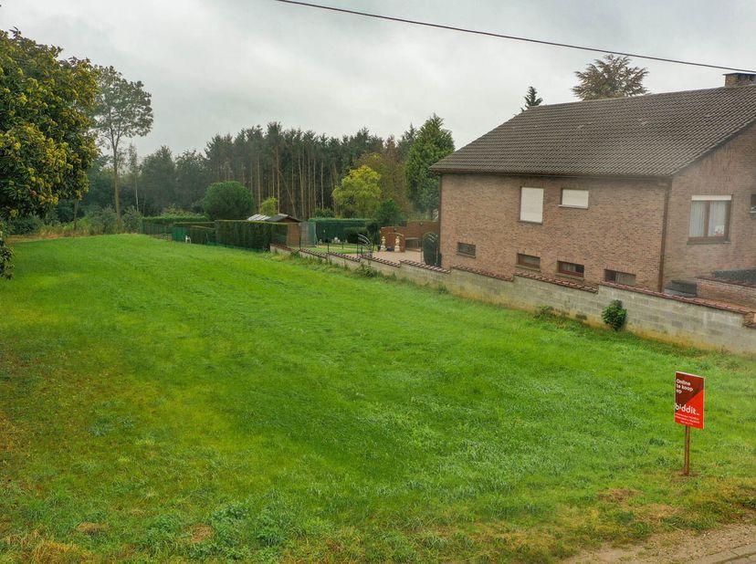 Terrain à vendre                     à 3221 Nieuwrode