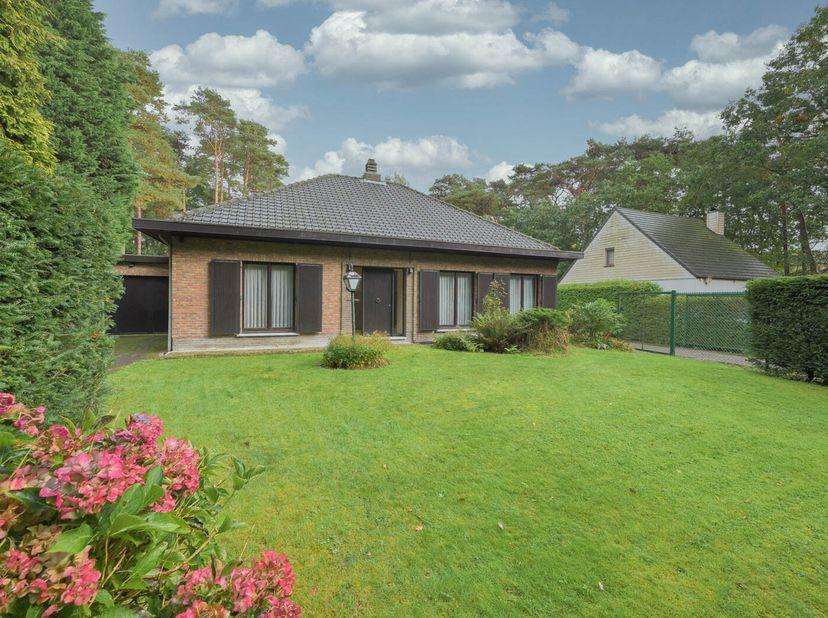 Gelegen in de groene Elshout wijk te Schoten vinden we deze ruime villa met 4 slaapkamers, inpandige garage, een grote omheinde tuin met 2 x verharde