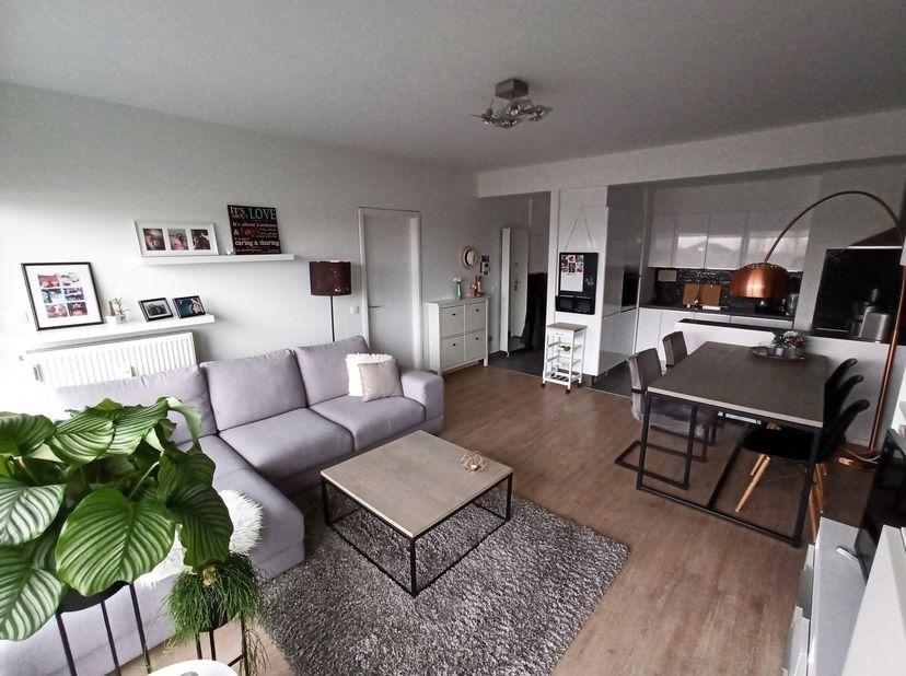 Appartement à louer                     à 2600 Berchem