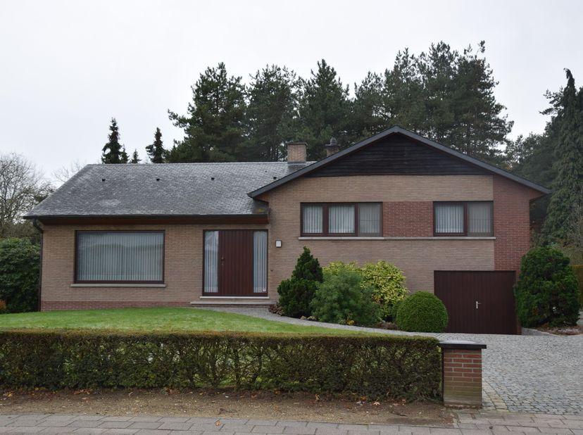 Te huur: ruime en volledig vernieuwde splitlevel-gezinswoning met garage, tuin en terras. Rustig gelegen in de dorpskern van het heuvelachtige Gellik,