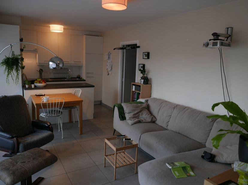 Volledig gerenoveerd, lichtrijk en energiezuinig appartement van 44m² op de 4e verdieping met 1 slaapkamer en schitterend zuidgericht terras, op wande