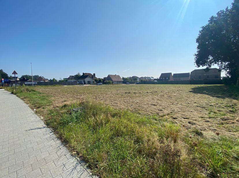 Centraal gelegen projectgrond zonder bouwverplichting<br /> <br /> Dit perceel bouwgrond is gelegen op de hoek van de Ringlaan en de Veldstraat te Pel