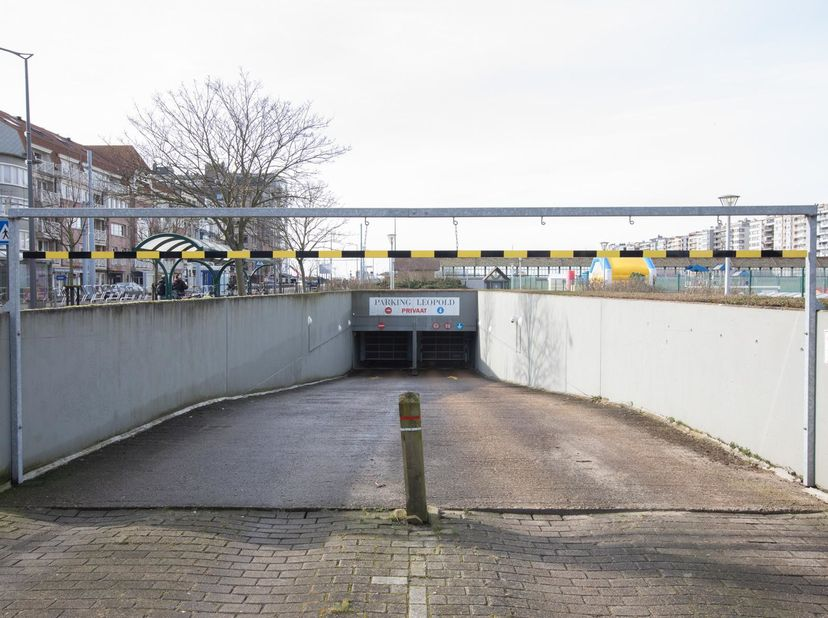 CENTRAAL GELEGEN GARAGEBOX<br /> In garagecomplex Leopoldpark, bekend ten kadaster 1ste afdeling, sectie A, nummer 794 03 B P0065; dragende nummer E4.
