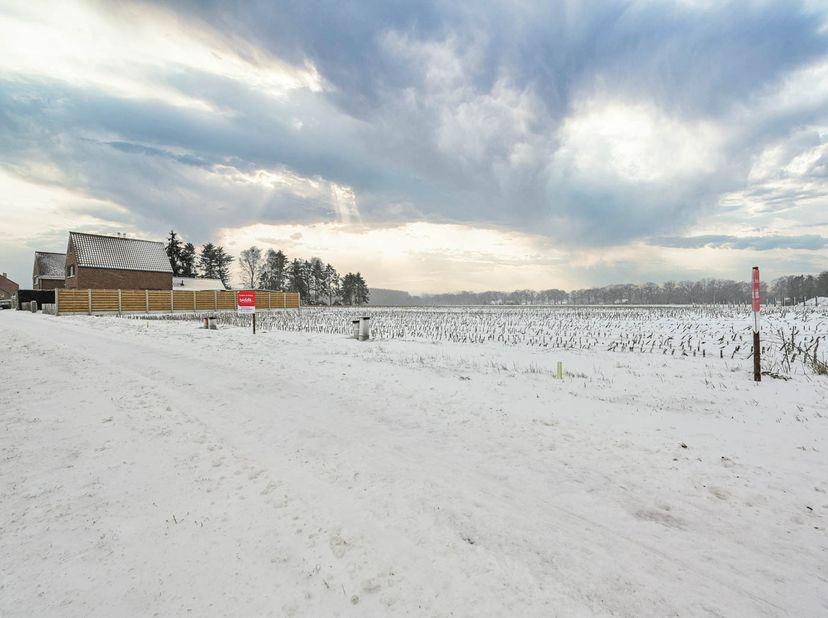 Gemeente Bocholt (1e afdeling) <br /> Een perceel bouwgrond bestemd voor open bebouwing gelegen aan de Hamonterweg (Loozen Het Gehucht), kadastraal g