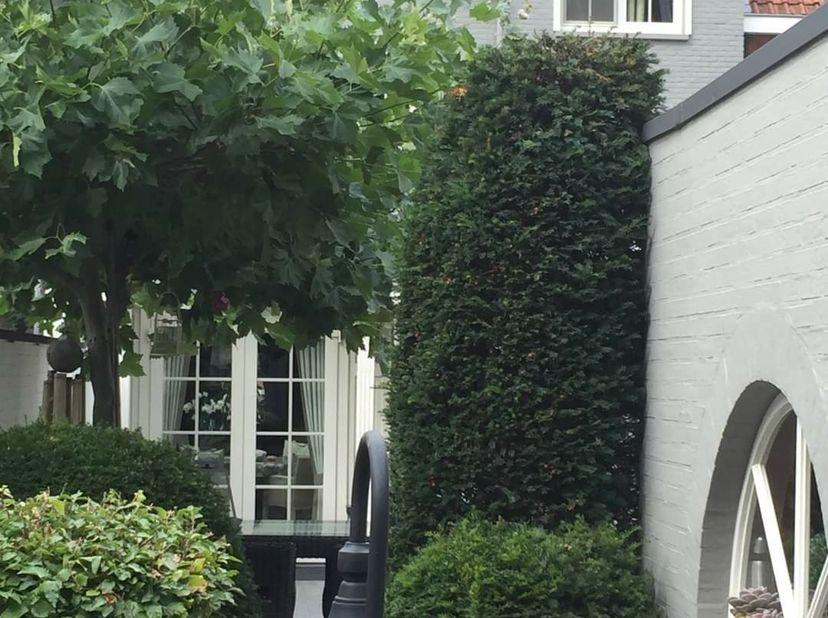 Prachtige woning in het centrum van Mol.<br /> Instapklaar, duurzame materialen,  volledig gerenoveerd.<br /> Dubbele garage in de tuin, alsook 2 priv